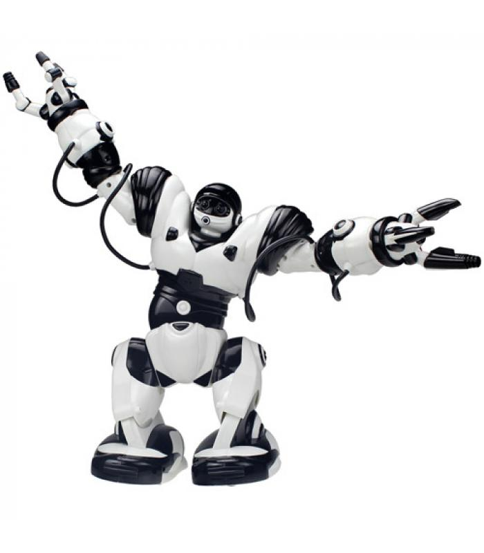 Робот Roboactor TT313